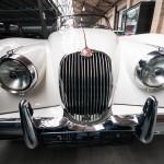 classic-cars-5